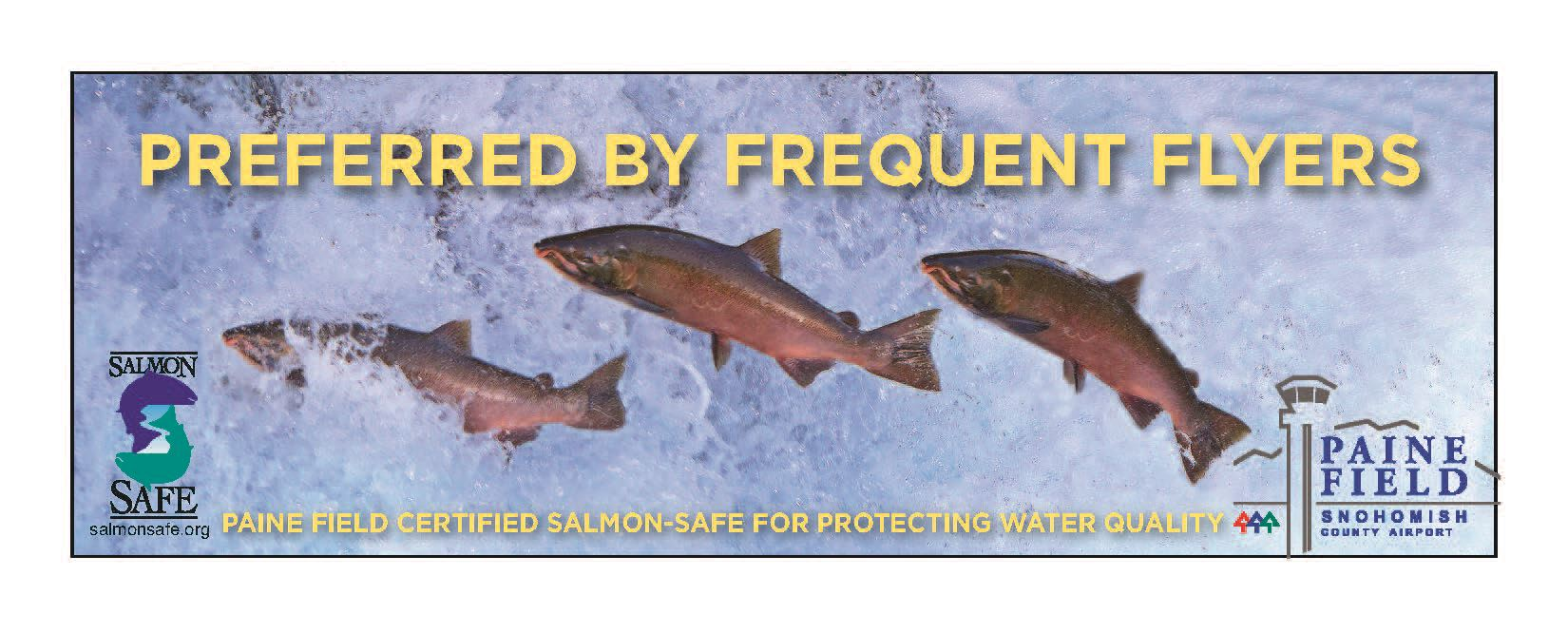 salmonsafe paine field campaign crop